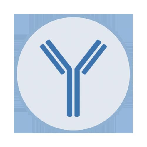 Technology – Platform Page